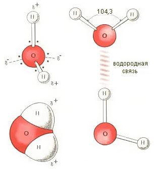 Адрес статьи: http://rodnikzdorovia.ru/struktura.html. статью о структуре воды. нашего коллеги...